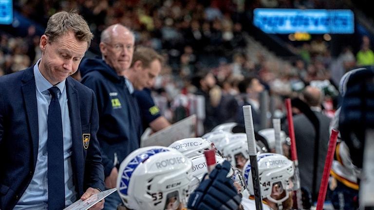 Djurgårdens tränare Robert Ohlsson
