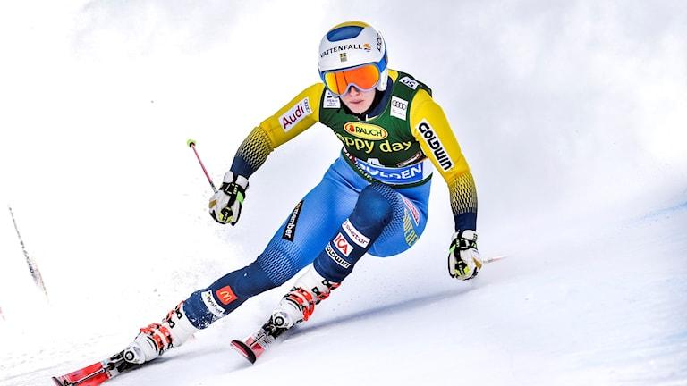 Maria Pietilä Holmner.