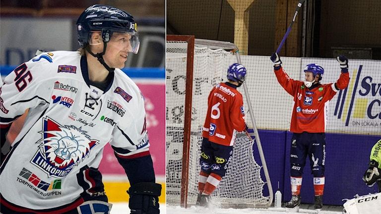 Linköping och Edsbyn är två av lagen i kvällens Sportextra.