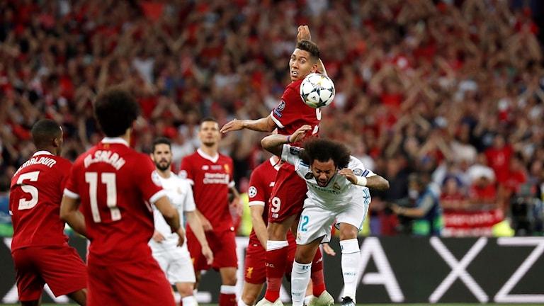 Liverpool föll mot Real Madrid i finalen i fjol.