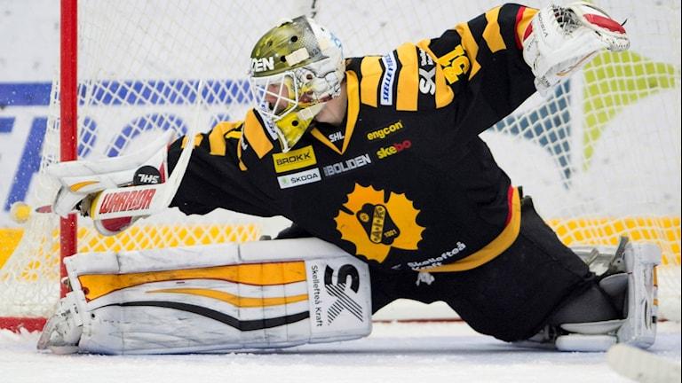 Skellefteås målvakt Joni Ortio räddar ett skott under fredagskvällens SHL-match i ishockey mellan Rögle och Skellefteå i Lindab Arena i Ängelholm.