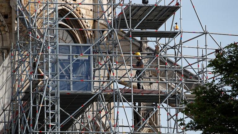 Frankrike Notre Dame eldsvåda. Foto: Christophe Ena/TT