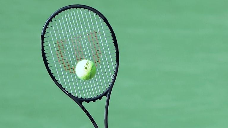 Tennisracket.