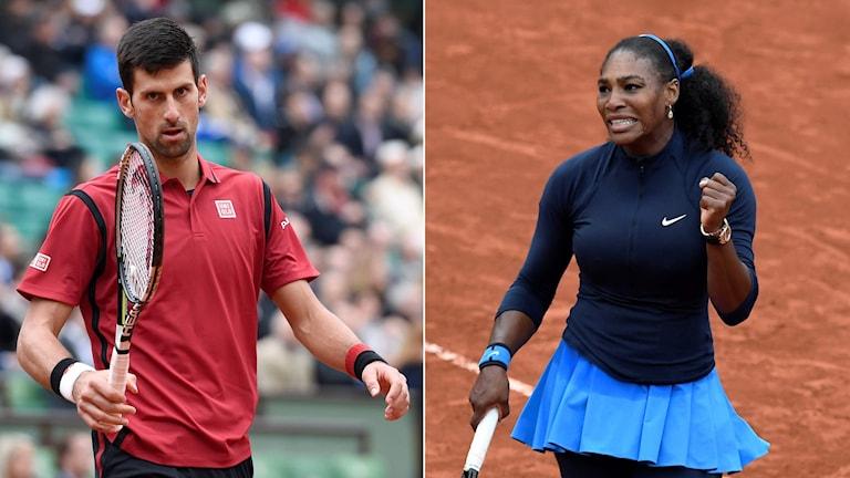 Novak Djokovic och Serena Williams.