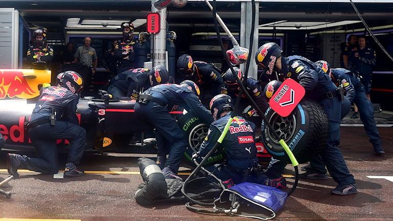 Fredrik af Petersen tror att någon eller några av Daniel Ricciardos mekaniker kommer att få en rejäl utskällning.