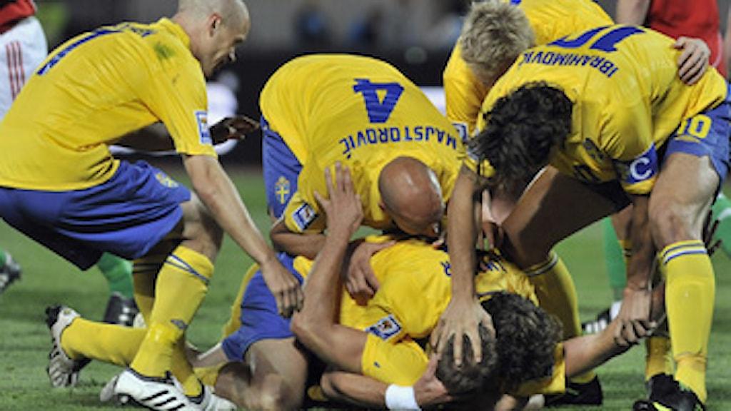 Sverige firar efter ledningsmålet mot Ungern. Lördag Sept. 5, 2009. (AP Photo/Bela