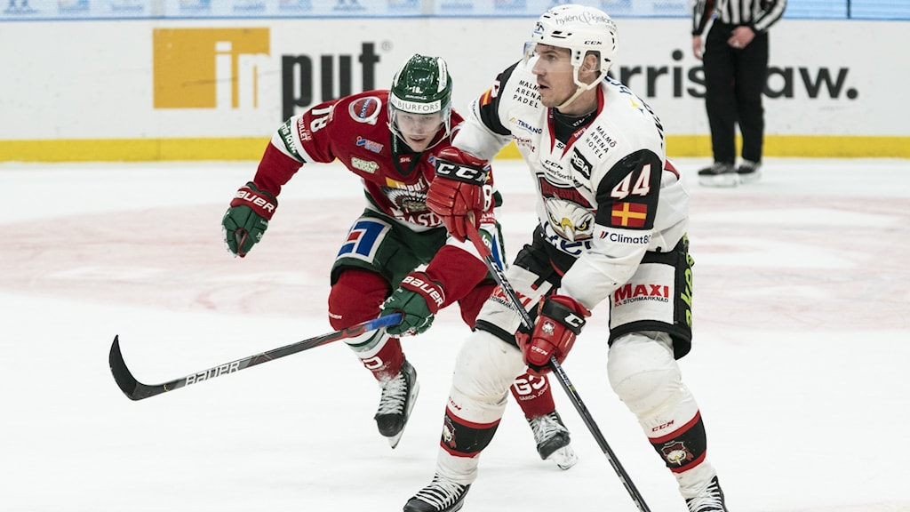 Hockeyspelare
