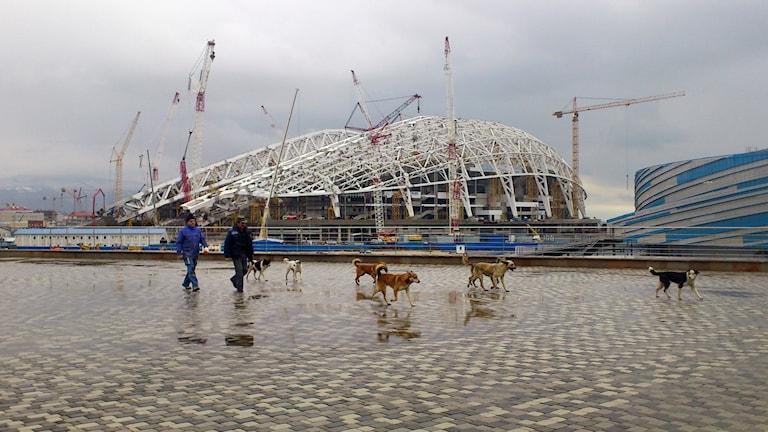 Olympiastadion Fisjt inför OS i Sotji 2014.