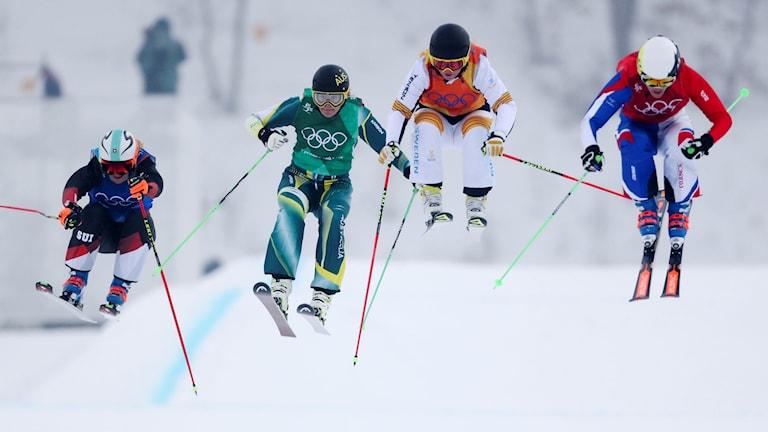 Skicross under vinter-OS i Pyeongchang.