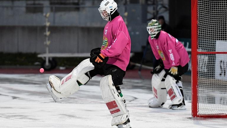STOCKHOLM 20181031 Hammarby bandys målvakt Patrik Hedberg under träning på Zinkensdamms IP  Foto: Erik Simander / TT