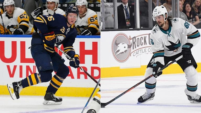 Collage NHL. Foto TT, collage SR