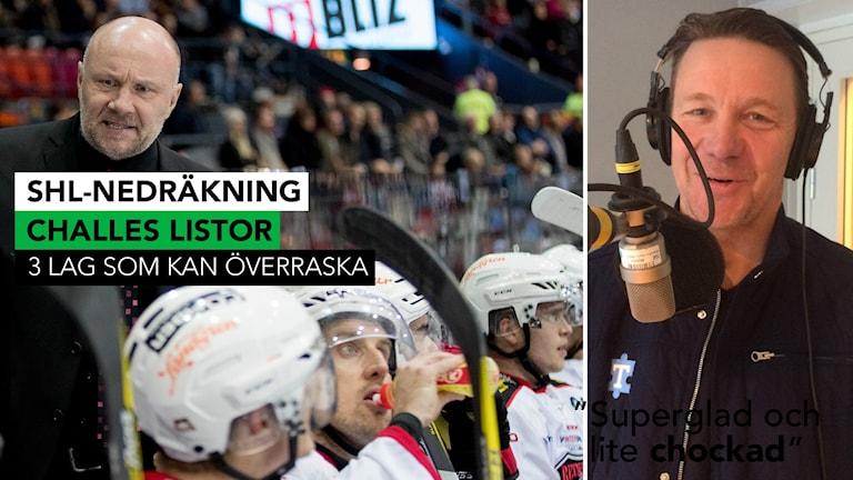 Challe Berglund tror att Peter Anderssons Malmö kan överraska denna säsong. Foto: TT och SR