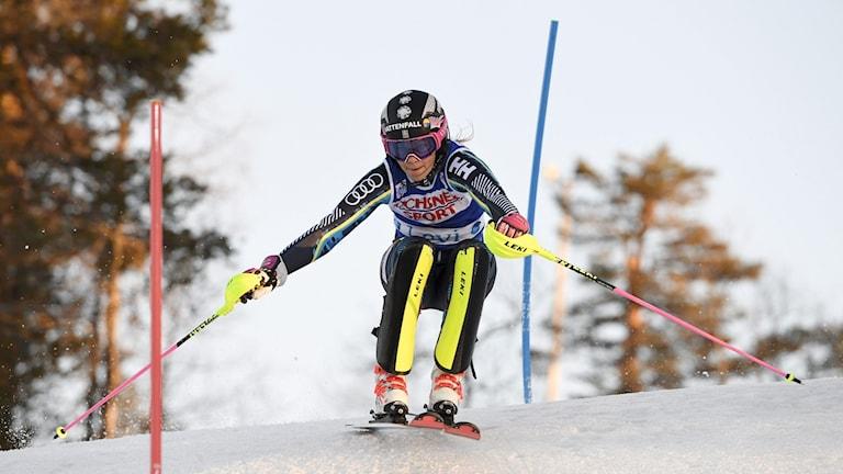 Frida Hansdotter i slalompremiären.