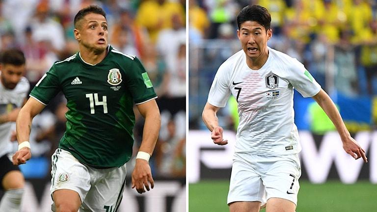 Mexikos Javier Hernandez och Sydkoreas Son Heung-min möts. c9e3d38b983cd