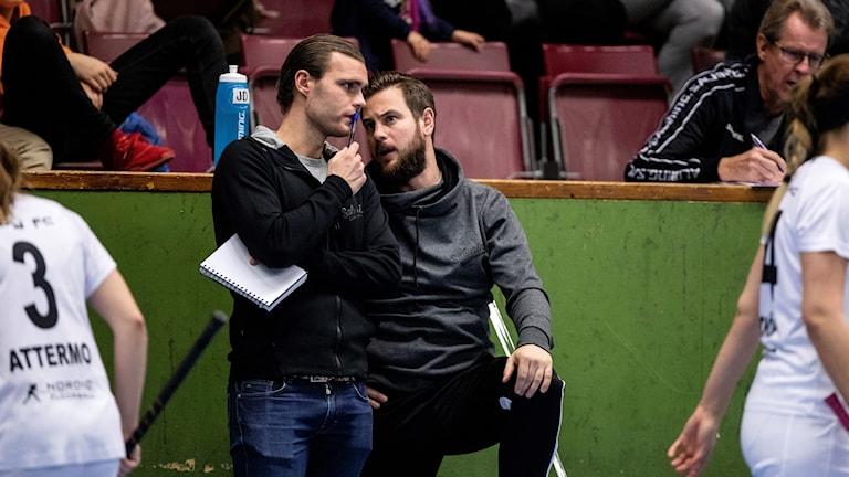 Täbys tränare Tomas Davies och Jonas Delshammar lämnar klubben omedelbart.