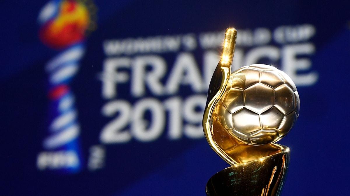 Fotbolls-VM 2019 bucklan. Foto: FRANCK FIFE/TT