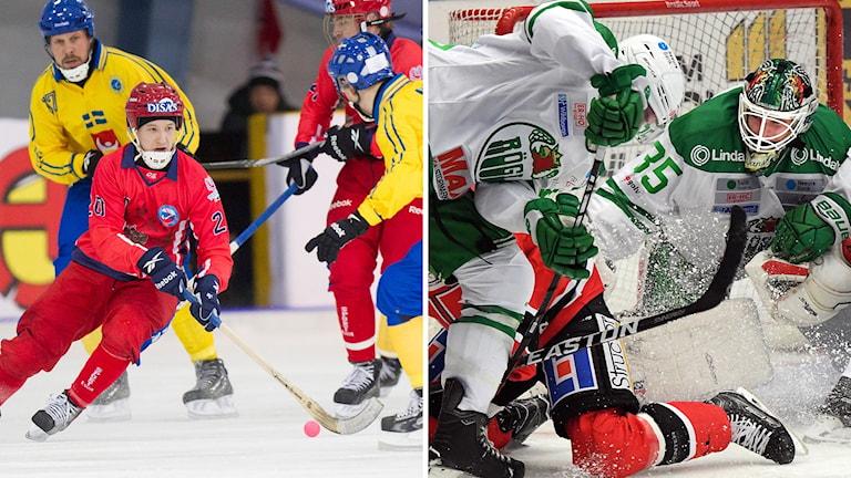 Sverige och Ryssland möts i en vänskapslandskamp i Trollhättan i kväll. I SHL-ishockeyn ställs Rögle mot Örebro.