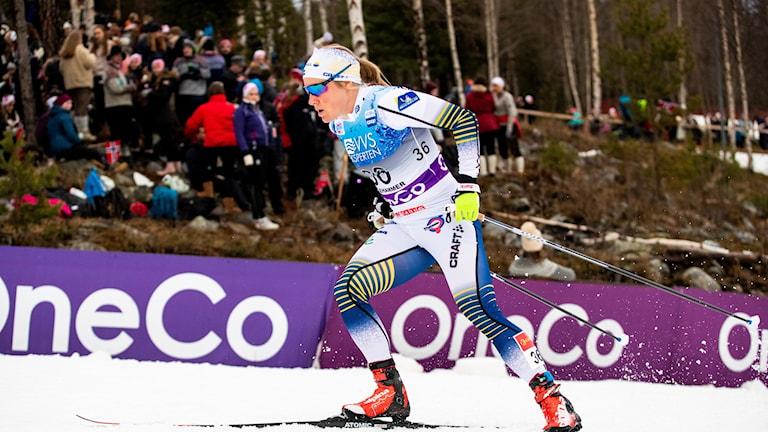 Hanna Falk petas i sprintstafetterna i Dresden. Arkivbild.