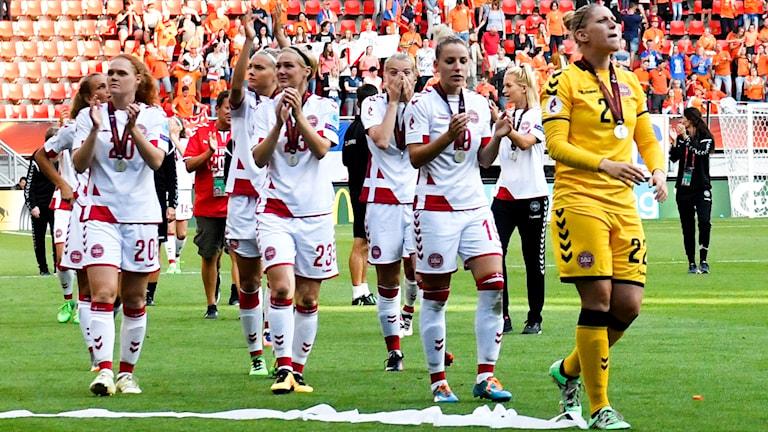 Danska landslaget tog silver i sommarens EM.