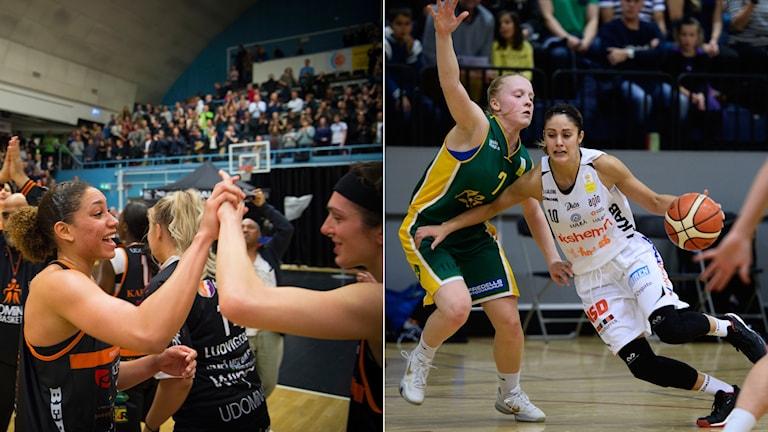 Både Umeå och Luleå vann i kväll.