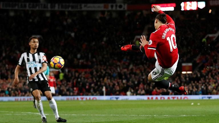Zlatans återkomst