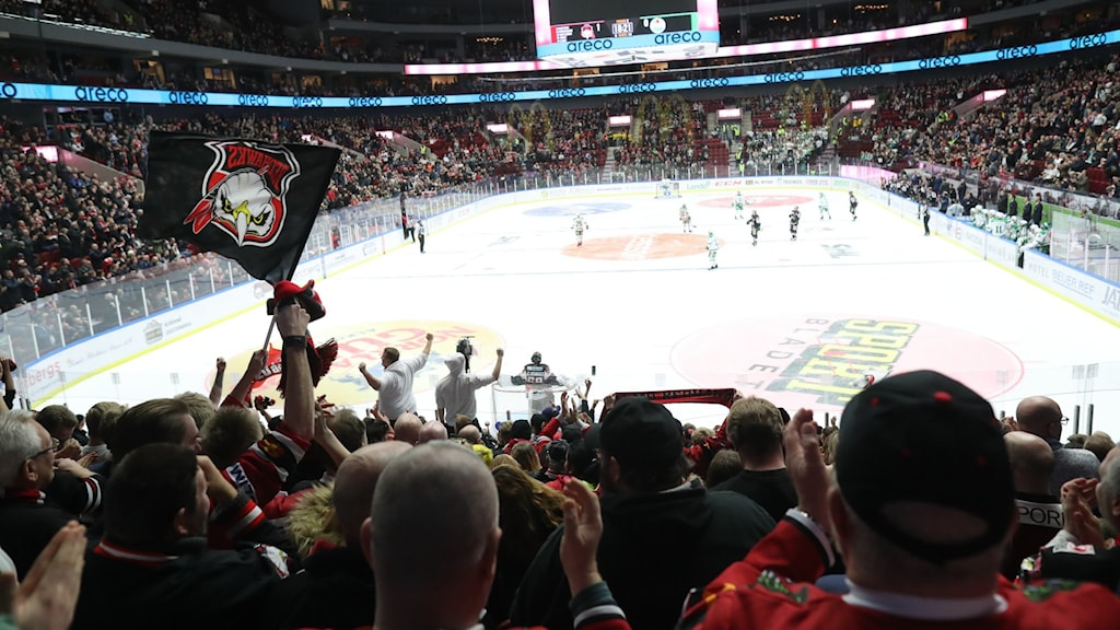 Publik under ishockeymatch.