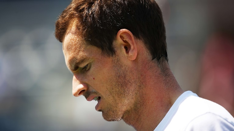 Andy Murray.