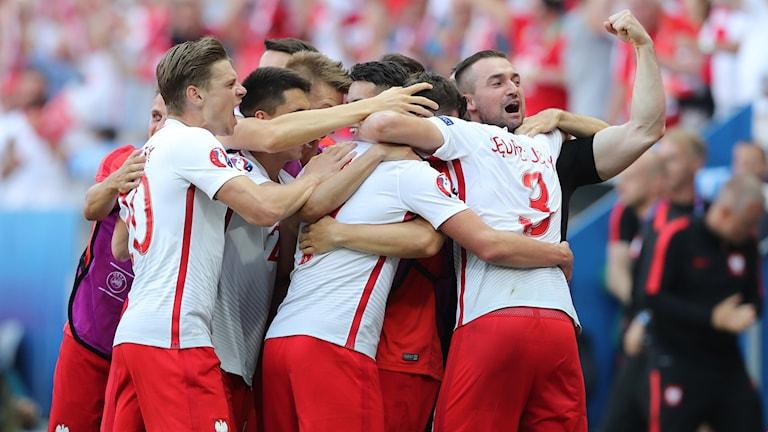20160612 Polen jublar efter Miliks mål mot Nordirland. Foto: AP Photo/Thanassis Stavrakis