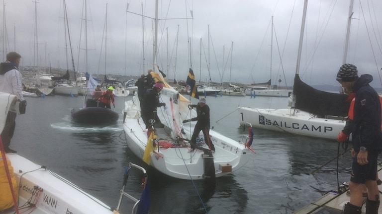 Anna Östling, segling.