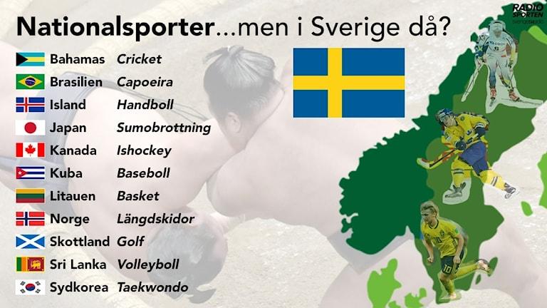 Vilken är Sveriges nationalsport?