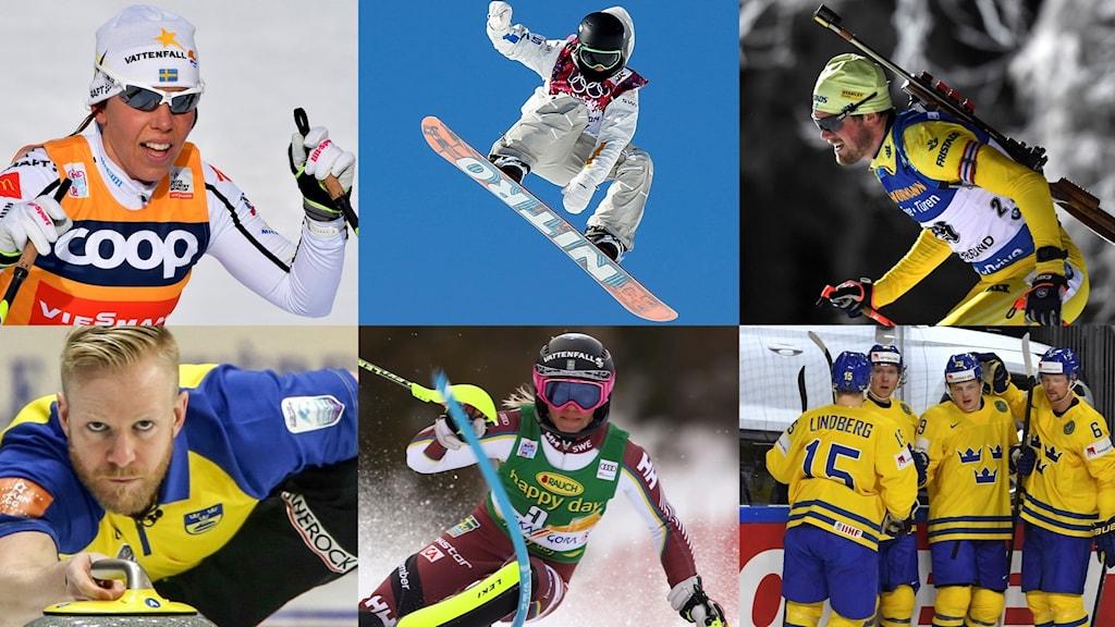 Collage Svenska OS-truppen. Foto TT, collage SR