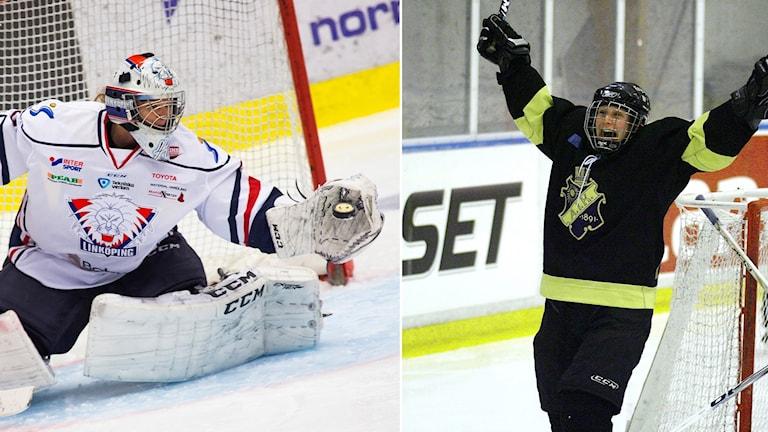 Sportextra med SDHL.