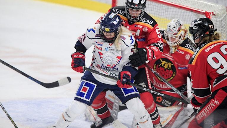 Luleå 20190313  Linköpings Madelen Haug Hansen framför Luleåkassen under onsdagens SM-slutspel i Svenska damhockeyligan, final 1 i bäst av 5, mellan Luleå HF och Linköping HC på Coop Norrbotten Arena.  Foto: Robert Nyholm / TT