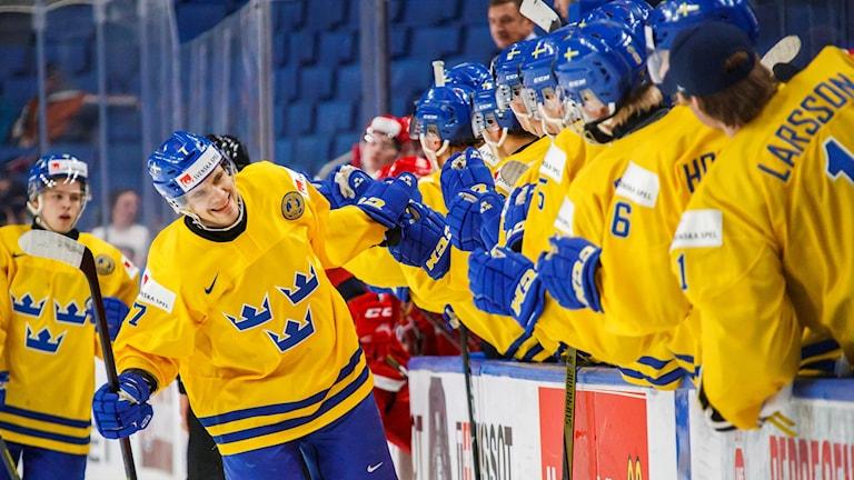 Sverige firar segern mot Slovakien.
