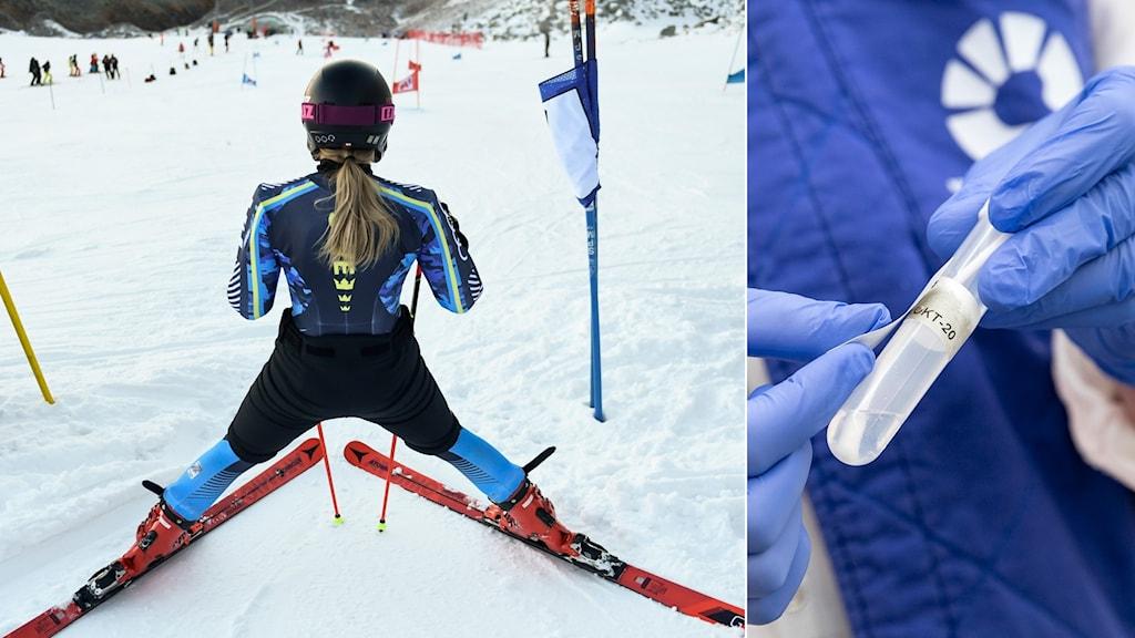 Svensk alpinåkare och coronatest