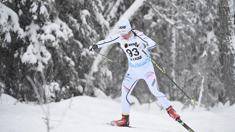 GÄLLIVARE 20171117  Charlotte Kalla på 5 km, fristil, under Sverigepremiären i skidor Gällivare.  Foto: Ulf Palm / TT