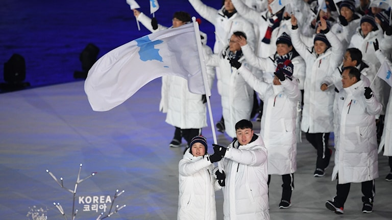 Sydkorea och Nordkorea går in tillsammans under enad flagga.