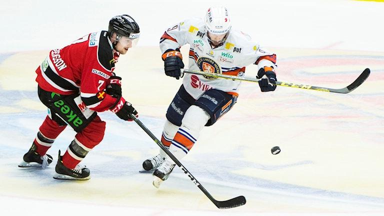 Växjö vann grundserien i fjol.