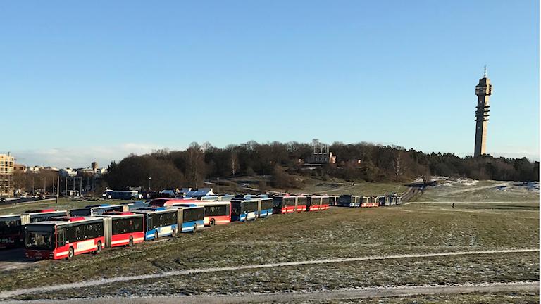 Hornsbergs bussar på Gärdet