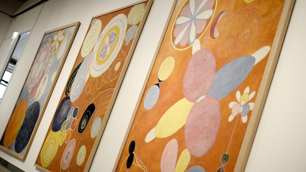 Kolme kappaletta Hilma af Klintin värikkäitä maalauksia sivusuunnasta katsottuina.