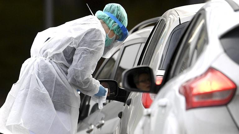 Koronatestiä otetaan autossa olevalta.