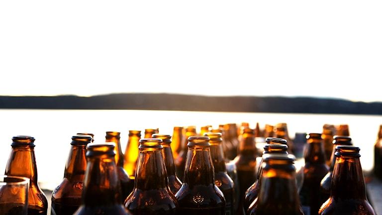 Öl, natur i bakgrunden