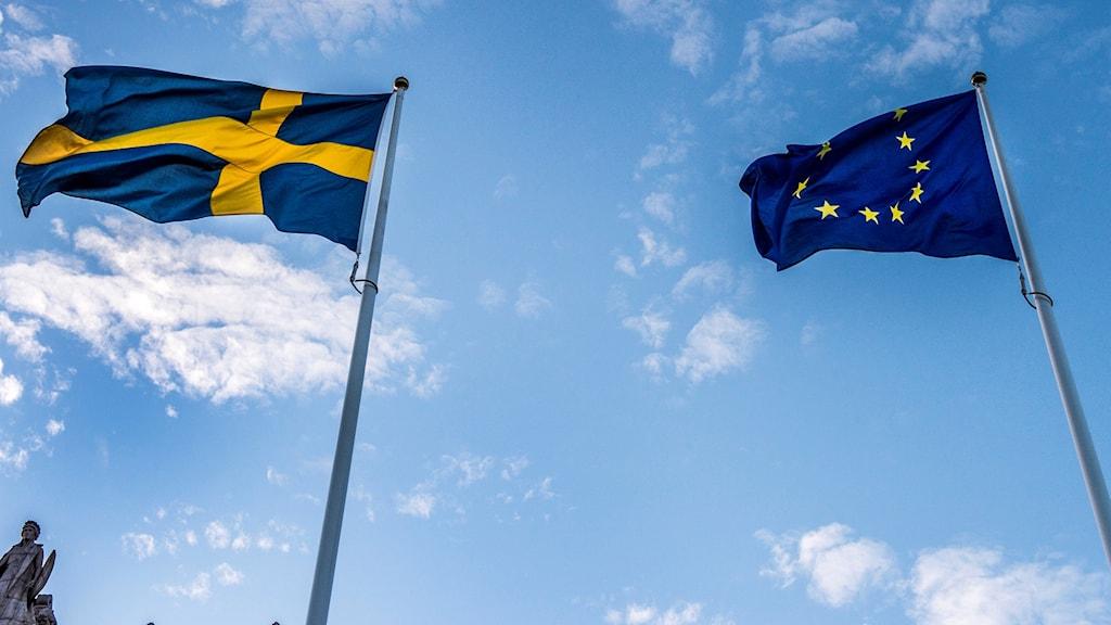 Ruotsin ja EU:n liput.