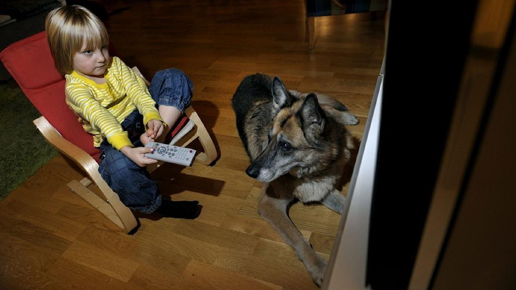 Lapsi katselee televisiota. Kuva: Janerik Henriksson, Scanpix