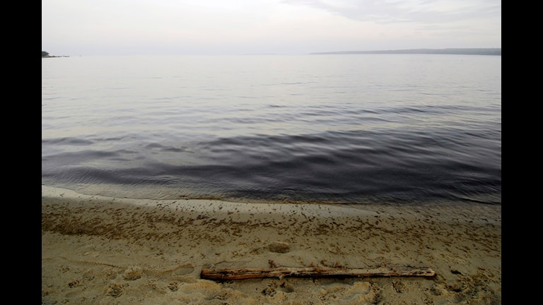 Itämeri. Kuva Hasse Holmberg / Scanpix
