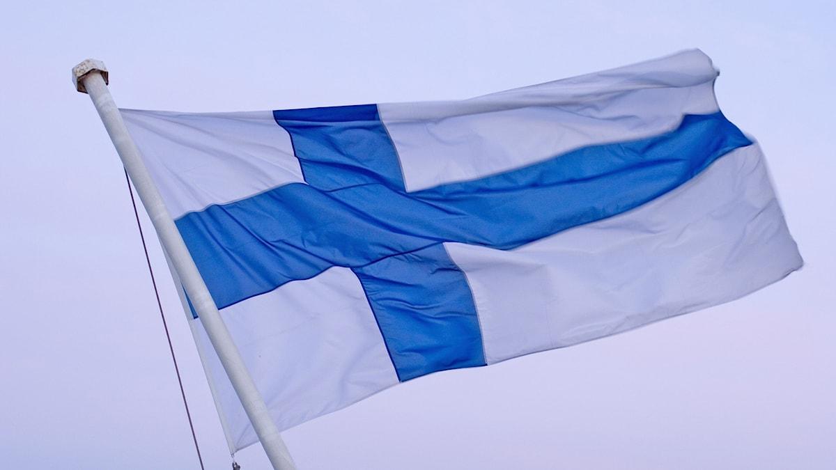 Fiska flaggan, en vit flagga med blått kors