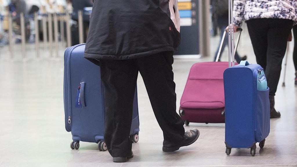 Kaksi ihmistä vetää matkalaukkuja.