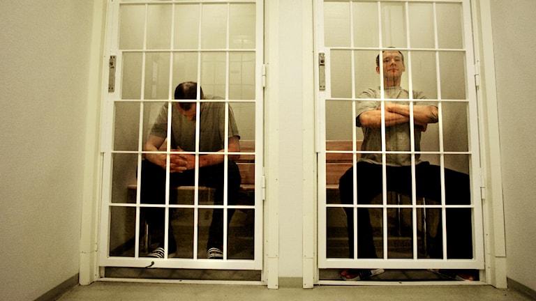 vankiselli