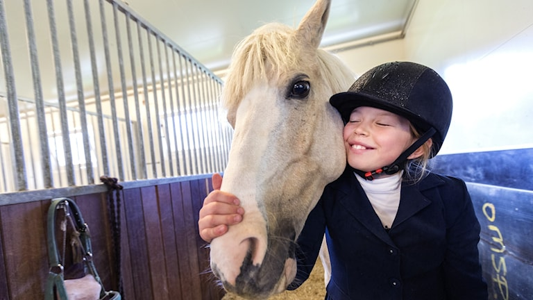 Nuori tyttö halaa valkoista hevosta hevostallissa.