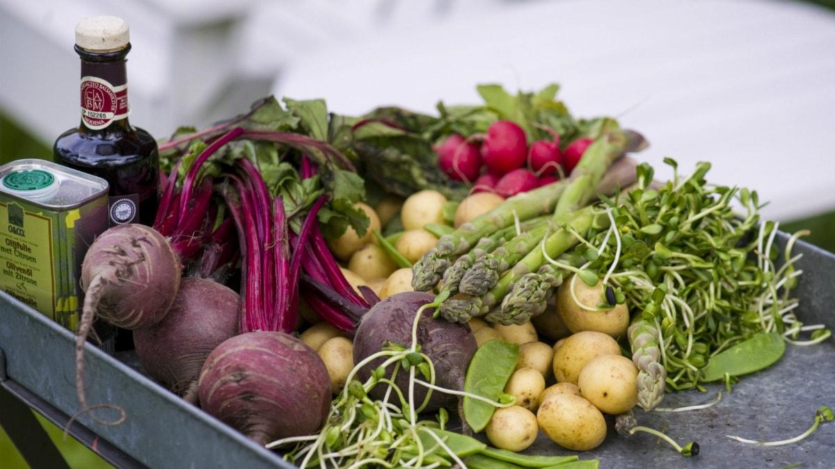 Uudet ravitsemussuositukset keskittyvät ruokavalioon kokonaisuutena. Foto: Leif R Jansson/ TT